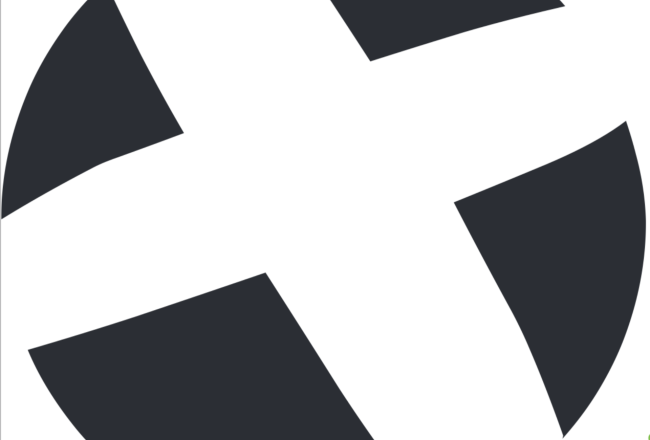 BSM Large Logo